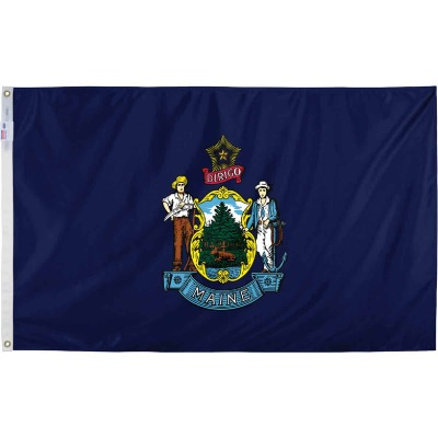 Valley Forge 3 Ft. x 5 Ft. Nylon Maine State Flag