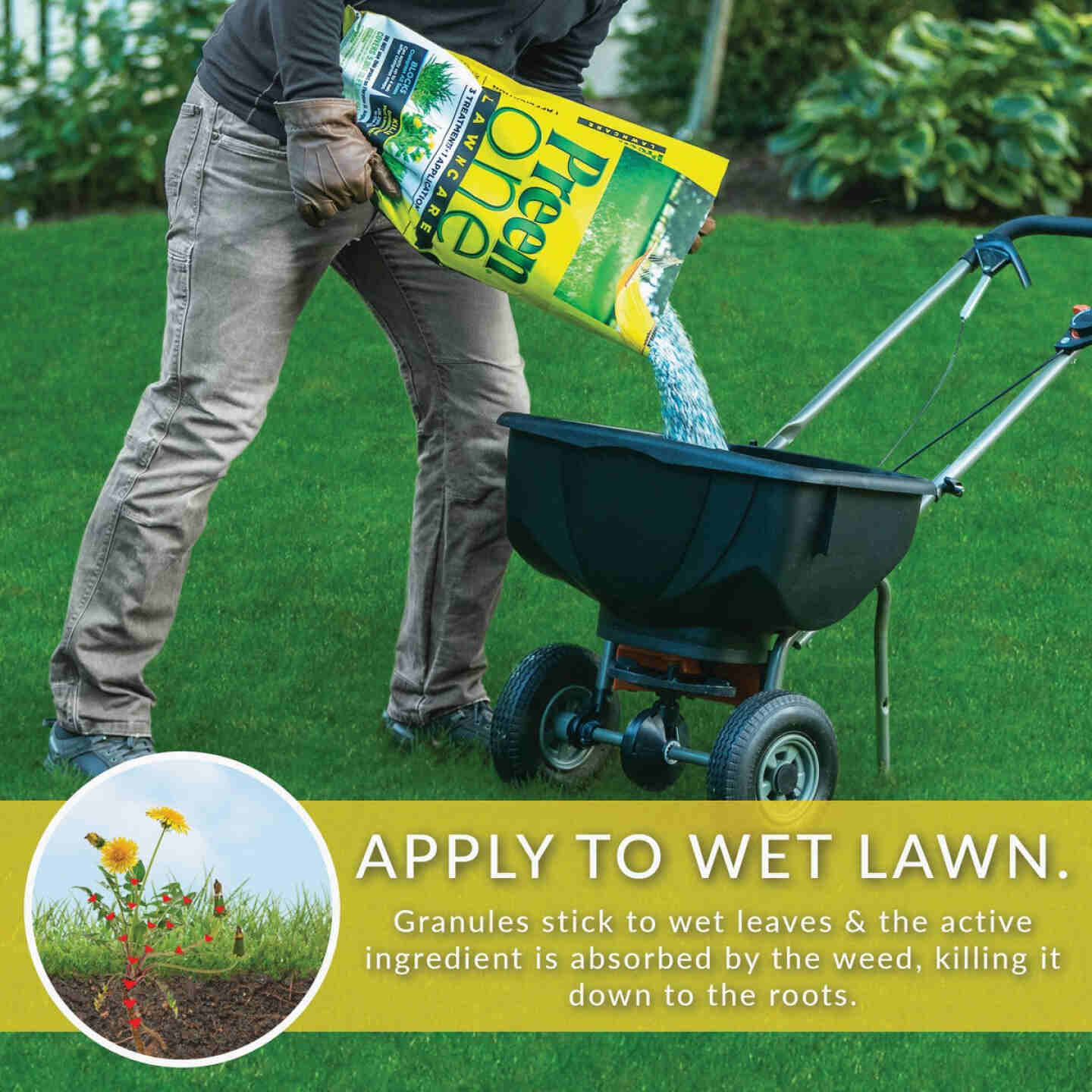 Preen One Lawn Care 18 Lb. Ready To Use Granules Weed Killer with Fertilizer Image 6
